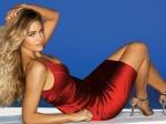 Denise Richards Hot (44)