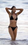 Denise Richards Hot Bikini (16)