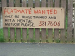 flatmate wanted